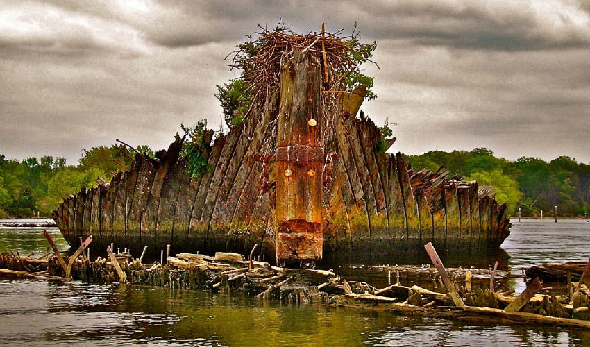 Explore the Ghost Ships in This Southern Maryland Park